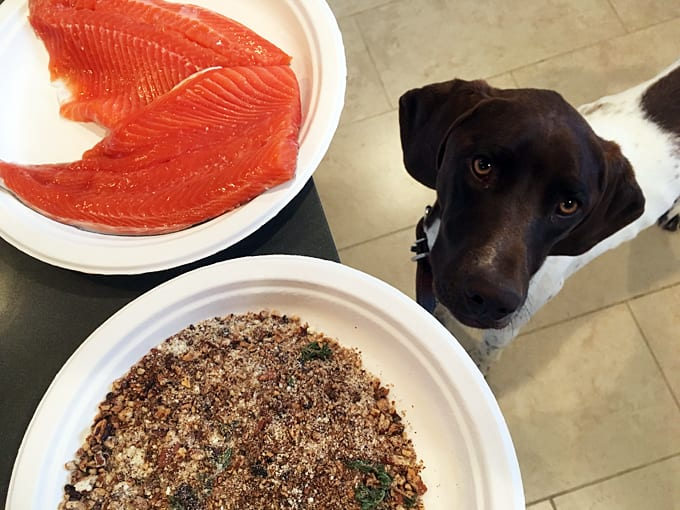 Pecan and Thyme Crusted Salmon